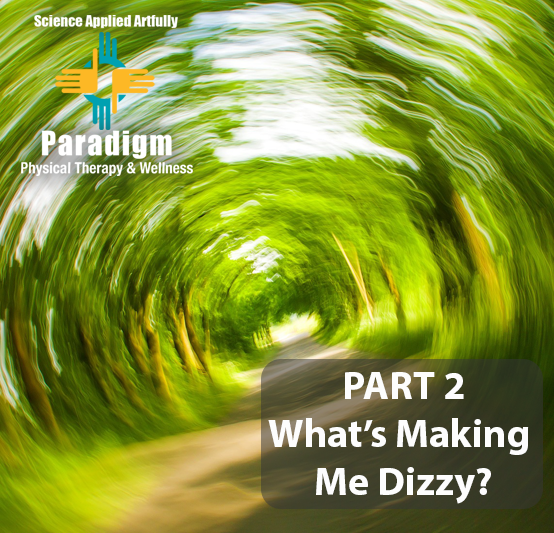 What's Making Me Dizzy? PART 2